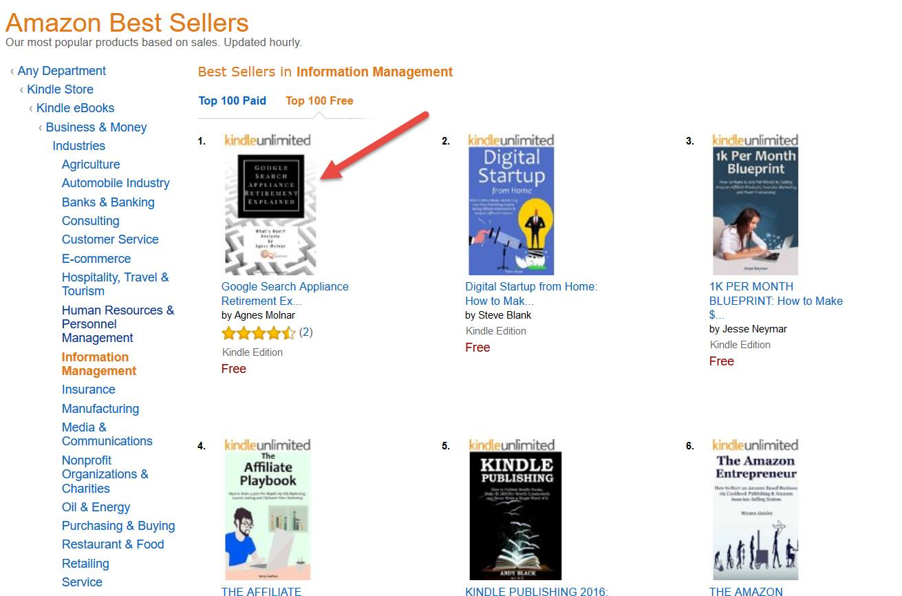 "GSA e-book is #1 Best Seller in ""Information Management"" Category on Amazon!"