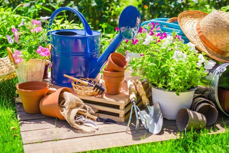 Search is like gardening.